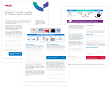 Marketing collateral for Ciena Corp.